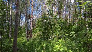 Pikkalassa sijaitseva portti näkyi varsin huonosti, koska kasvillisuus peitti sen osittain